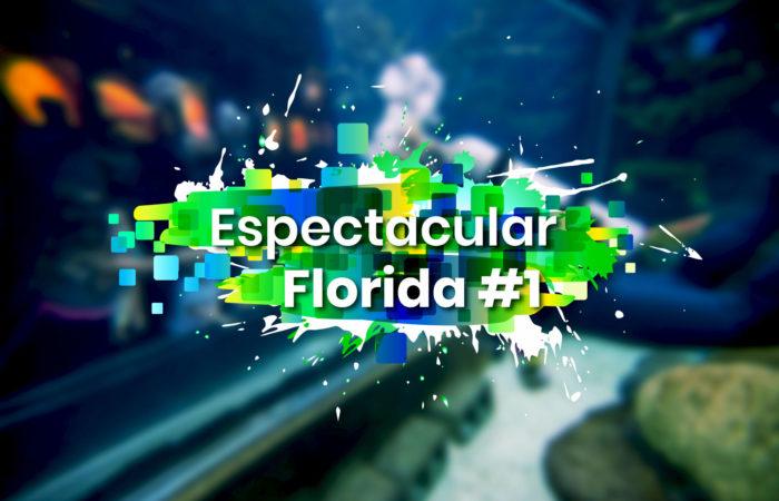 Espectacular Florida #1